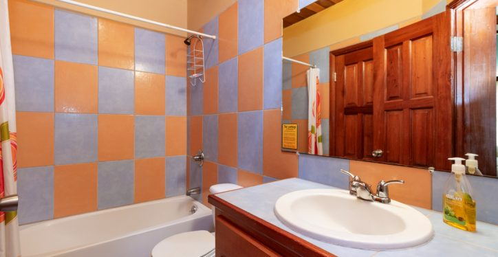 BL5-Bath2-1